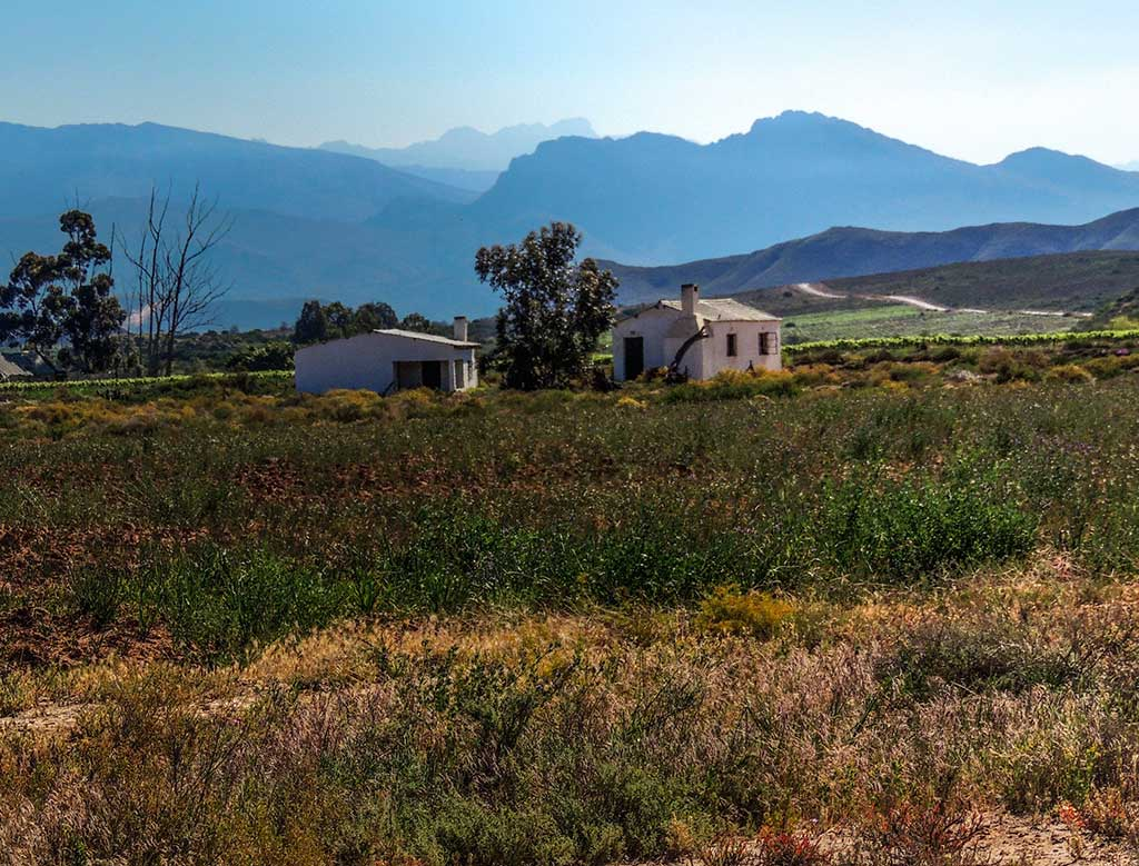 Sa landscapes neil thomson landscape architectneil for Sa landscaping